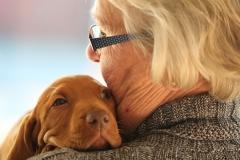 ocitocina, hormônio do amor abraço cachorro
