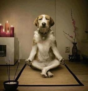 01-alimentos-para-alma-meditacao