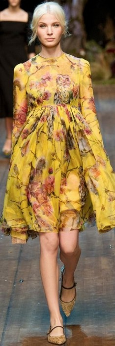 famosas plus size - Adele com Dolce e Gabbana