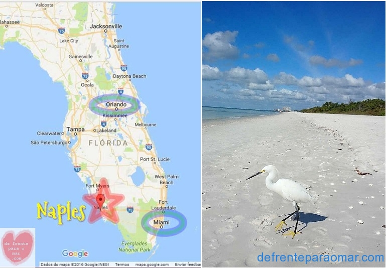 07-Naples-florida-Map
