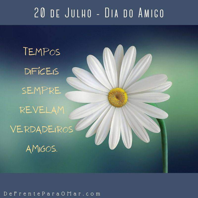 10 lindas frases para o Dia do Amigo - 20 de Julho