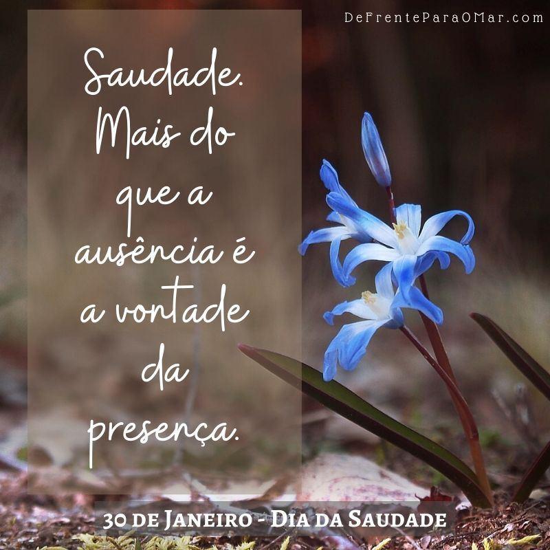 30 de Janeiro - Dia da Saudade - Saudade. Mais do que a ausência é a vontade da presença.