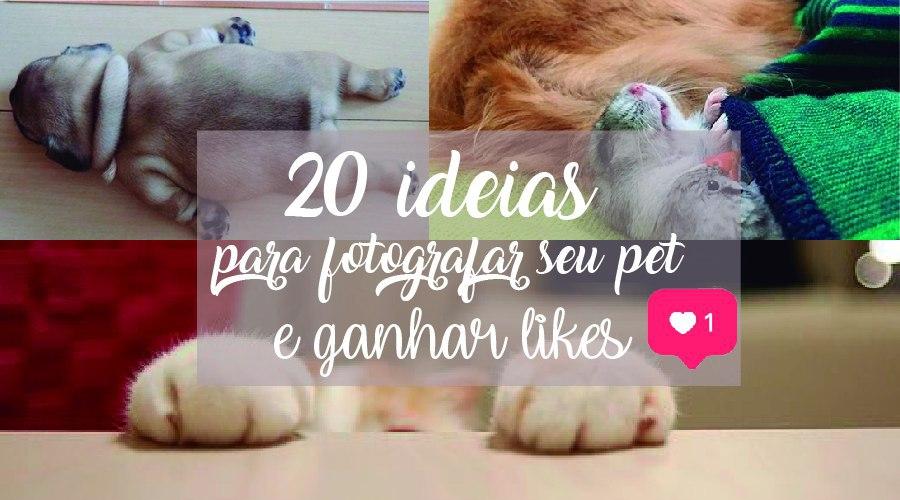 ideias para fotografar pets e compartilhar no instagram