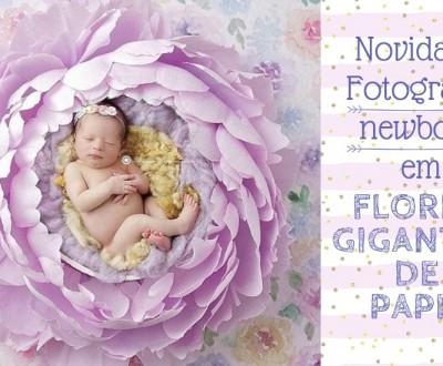Ideias de flor gigante para fotografias de newborn